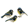 Offord & Sons | Saturno silver and enamelled Blue-tit birds