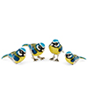 Offord & Sons | Saturno silver & enamelled Blue tit birds