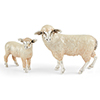 Offordandsons | Saturno Silver enamelled sheep