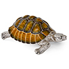 Offord & Sons | Saturno Silver Enamelled Large Turtle