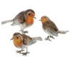 Offord & Sons | Saturno enamelled Robins