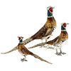 Offord & Sons Saturno silver enamelled pheasants